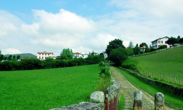 Sobresaliente aumento del turismo rural vasco en junio