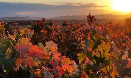 El turismo rural en La Rioja asciende en octubre